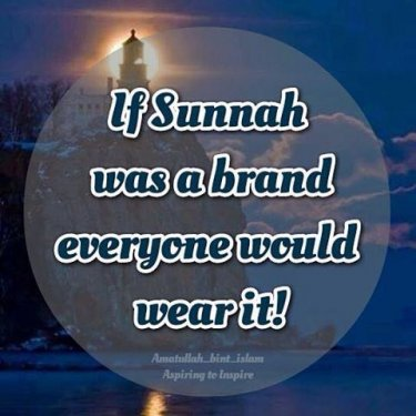 sunnah brand.jpg