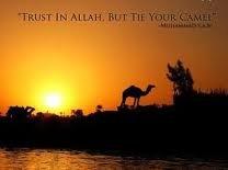 tawakkul. tie yr camel.jpg