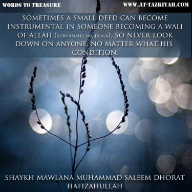 sh saleem quote _ wali.png