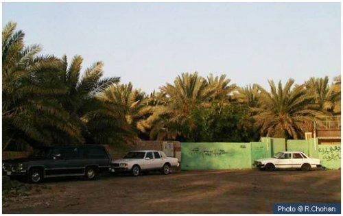 garden_of_salman_farsi_ra.jpg