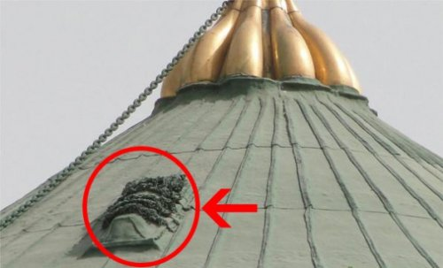 whats on the Green Dome 2.jpg