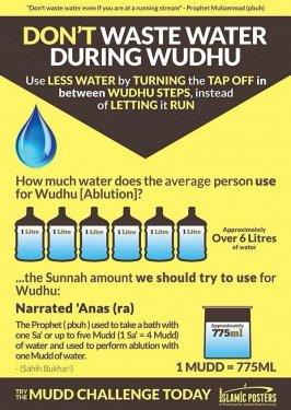 water in wudhu.jpg