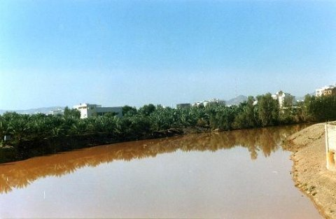 al aqeeq valley stream.jpg